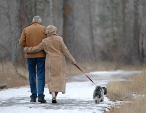 old-couple-walking-dog_thumbnail1